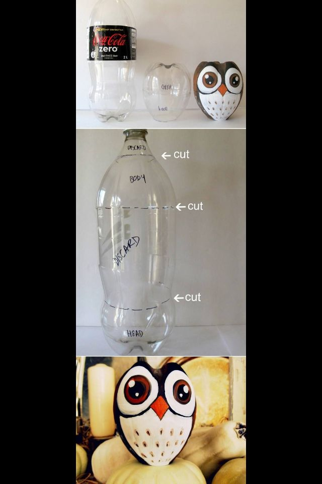 This Plastic Bottle Owl Craft is such