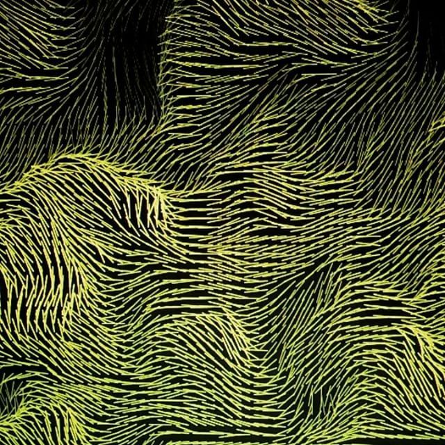 Perlin noise vector field | Drawing with String | Perlin