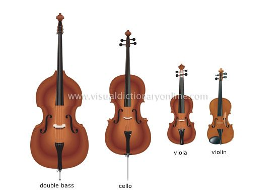 string family image Bass, Cello, Viola, Violin | Love My ...