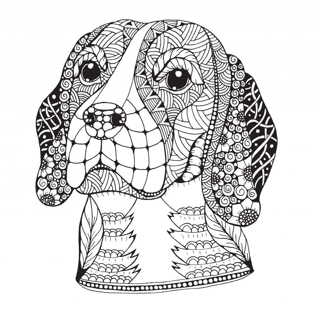 mandalas de perros  debuda  mandalas animales