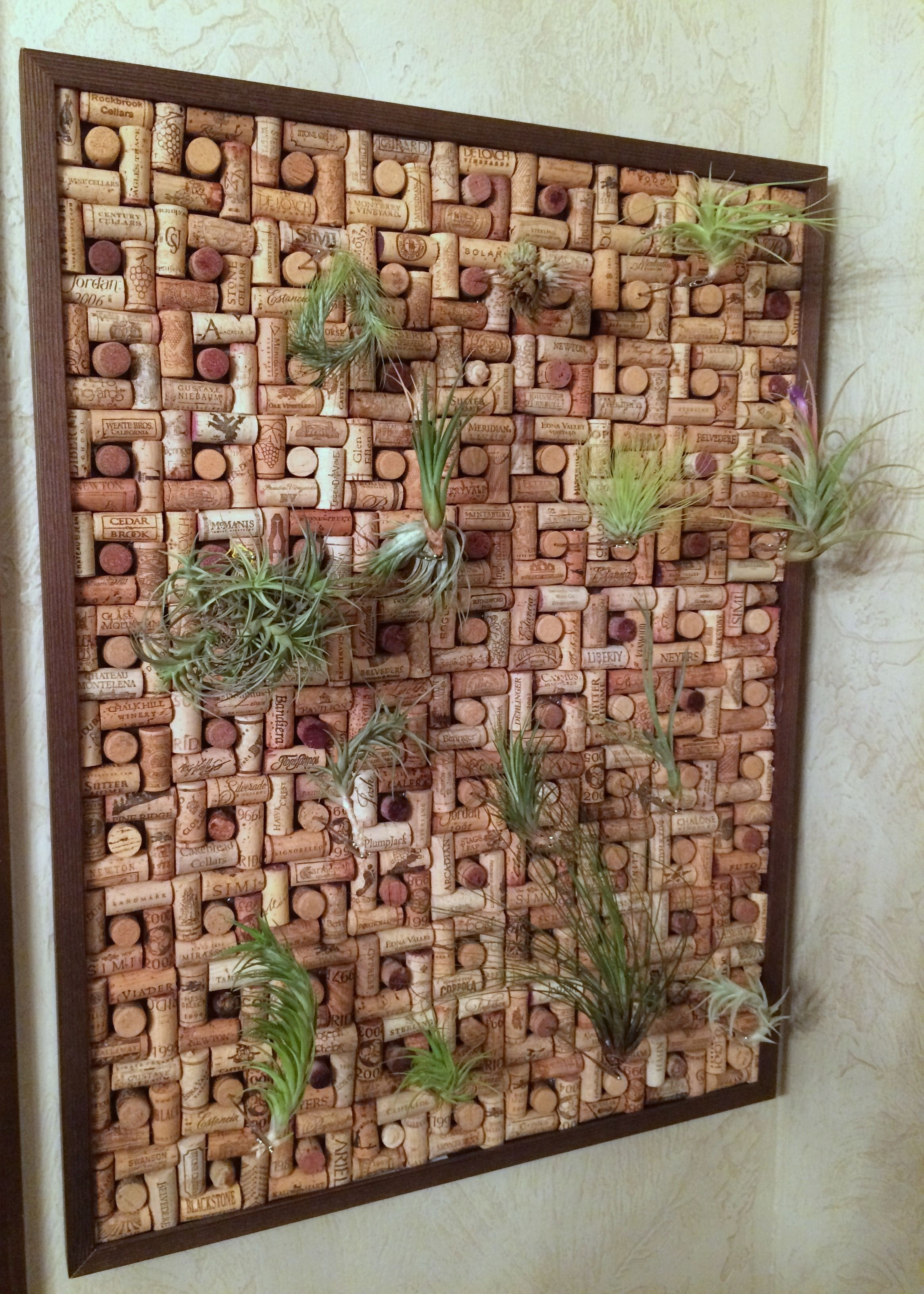 Wine Cork Project California Winery Cork Collection Air Plants 540 Corks Home Decor Wine Cork Craft Project Rolhas Cantinho