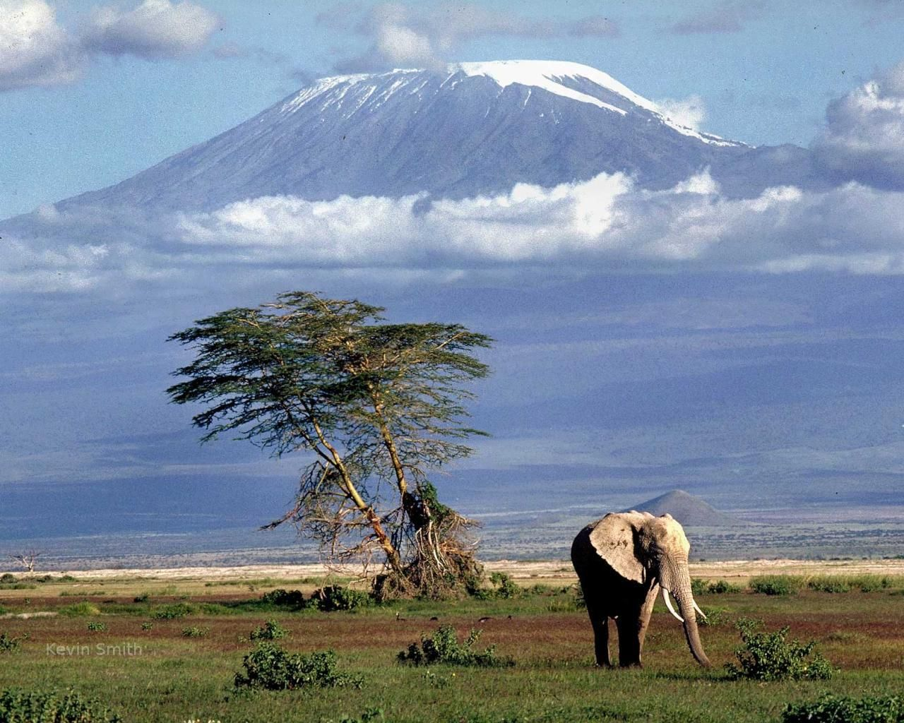 Mount Kilimanjaro National Park, Tanzania