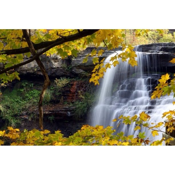 Discovered by Trey Beck: A beautiful fall day at Brandywine Falls - Brandywine, OH