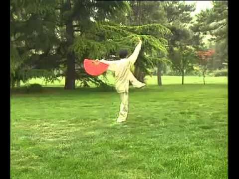 Tai Chi Leque 36 Espelho 36 Taiji Fan Mirror Yang Lee Tai Chi Kung Fu Meditação