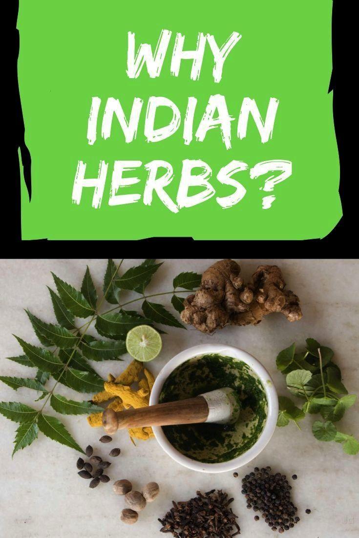 #healthylifestyle #indianindian #plantbased #herbalism #herbalist #benefits #fitness #natural #flowe...