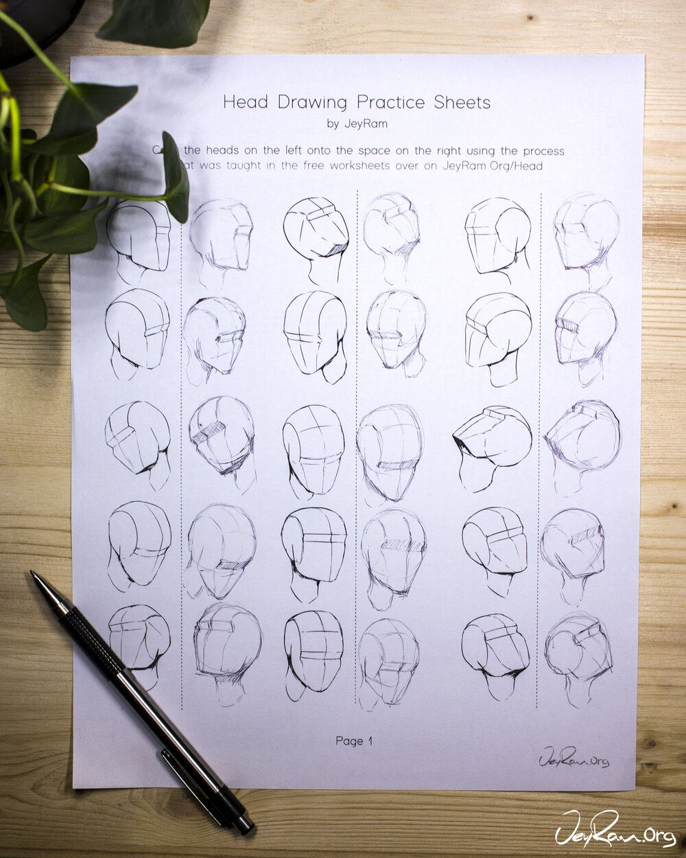 How to Draw the Head from Any Angle Free PDF Worksheets