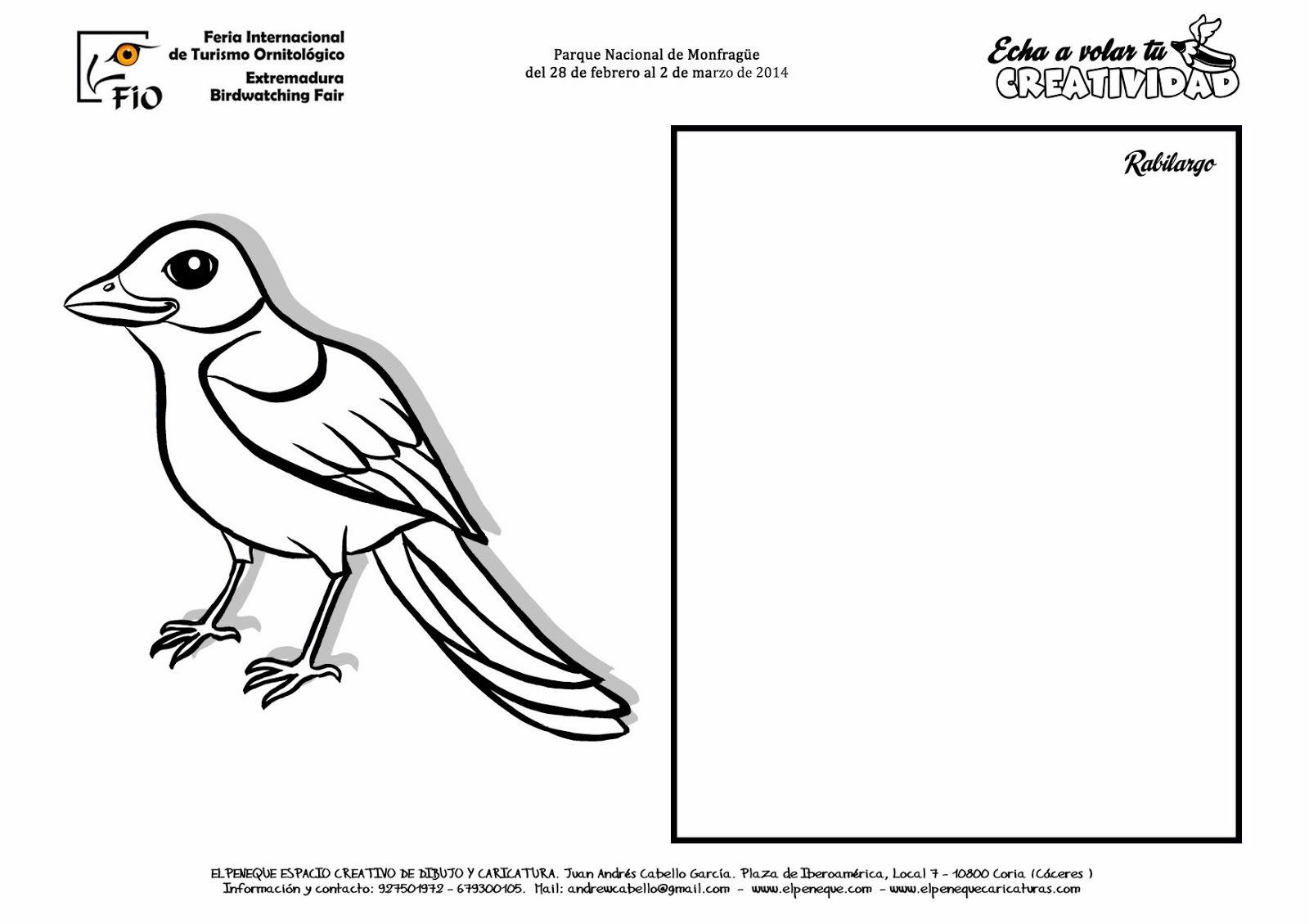 Fichas De Aves Para Dibujar Y Colorear En Fio Dibujos De Colores Dibujos De Aves Aves