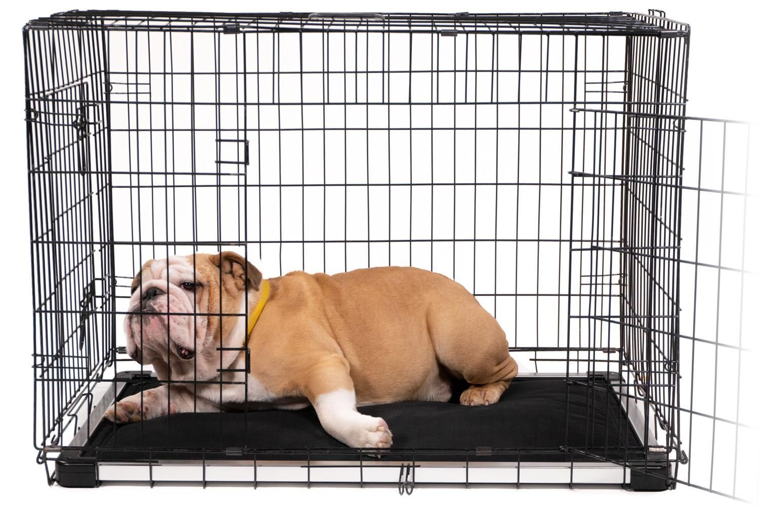 Chew Proof Armored Dog Crate Pad Indestructible Dog Beds K9 Ballistics Dog Crate Pads Indestructable Dog Bed Dog Crate