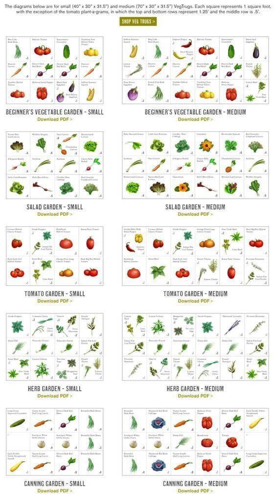 Little Garden Ideas  Tips
