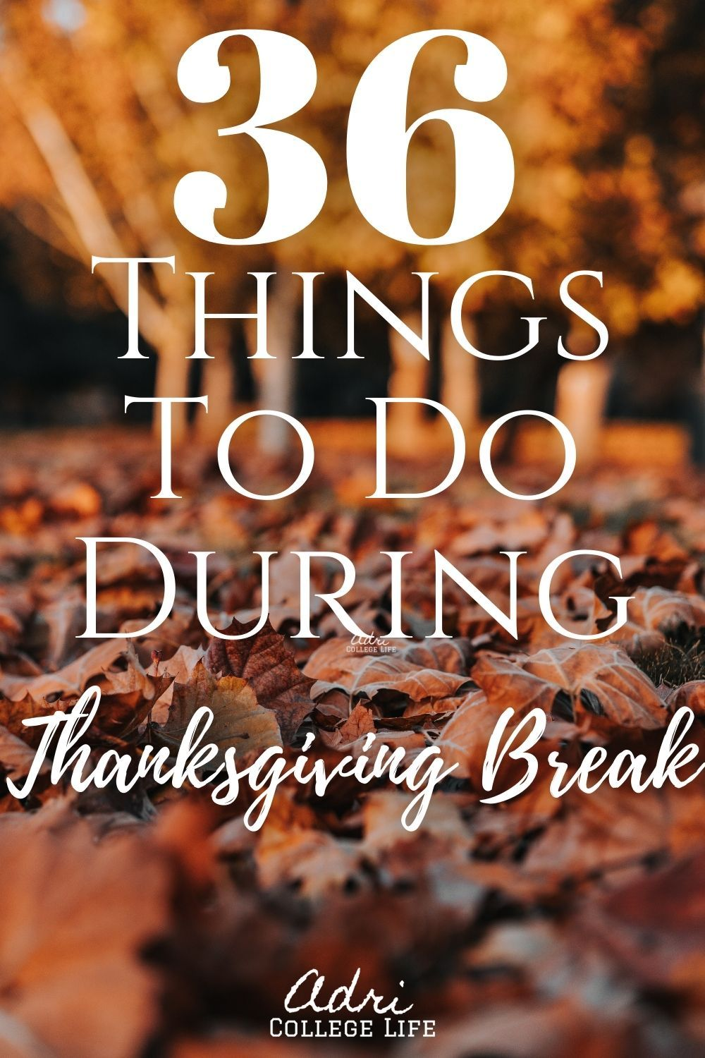 36 Things To Do During Thanksgiving Break In 2020 Thanksgiving Break Freshman Tips Freshman College