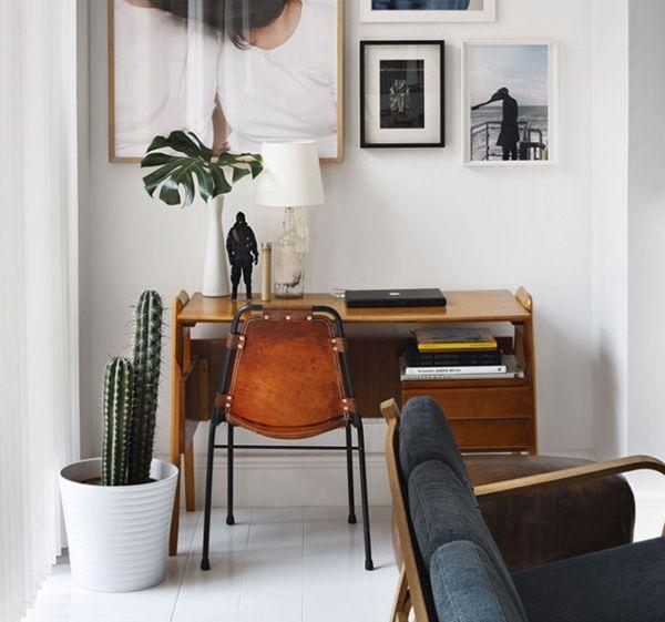 17 Indoor Cactus Gardens   Home Design And Interior