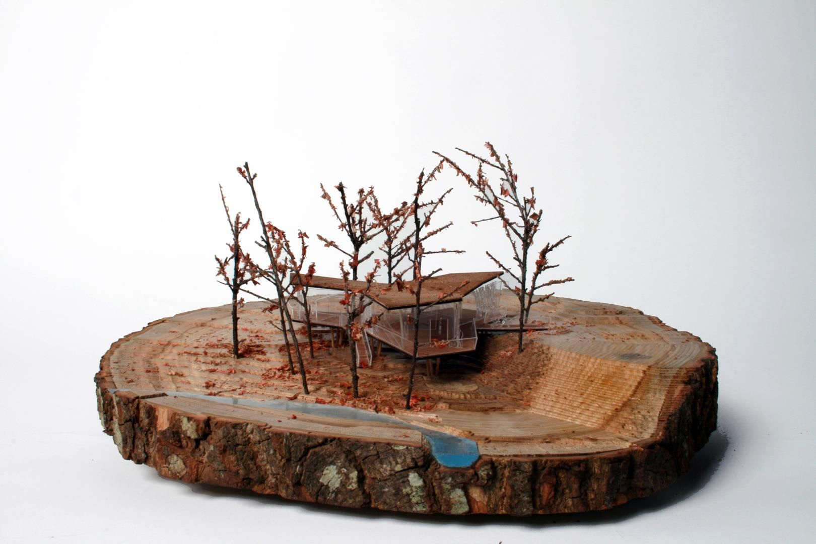 Bonsai Aarde Architecture Model By Stelios Maq Landscape Architecture Model