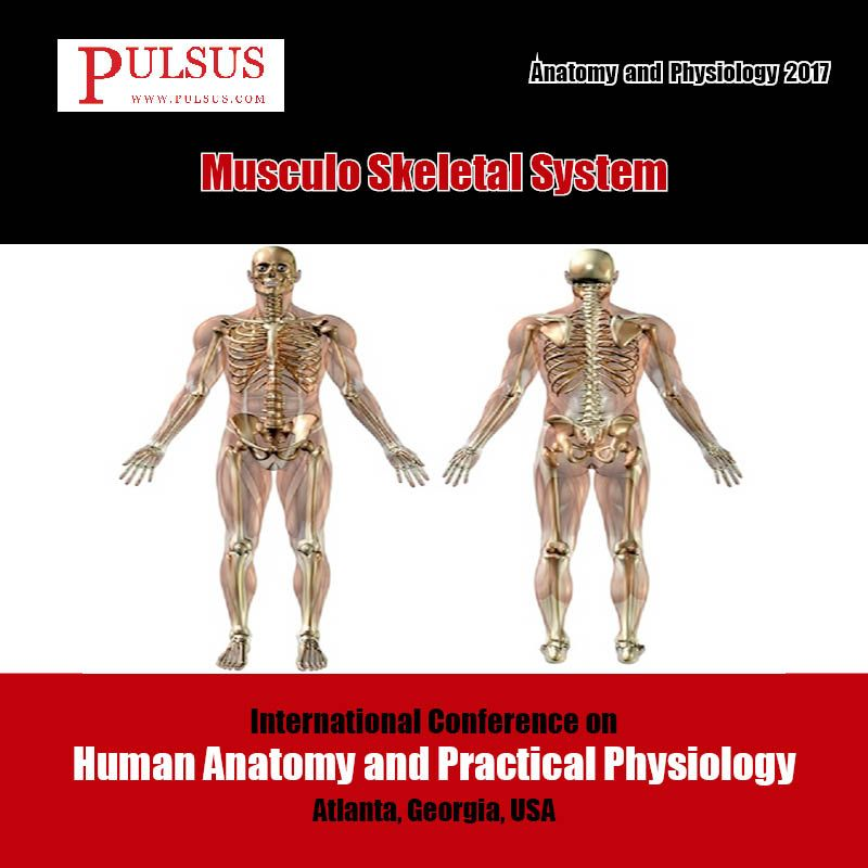 The #human musculoskeletal system (surely understood as the ...