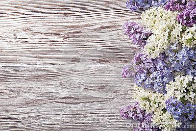 Lilac Flowers On Wood Background Blossom Branch On Vintage Wood Lilac Flowers Canvas Art Prints Wood Background