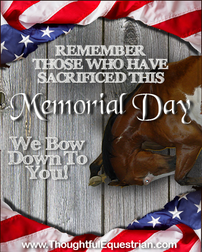 Happy Memorial Day weekend.  Be sure to thank a vet for your precious liberties.