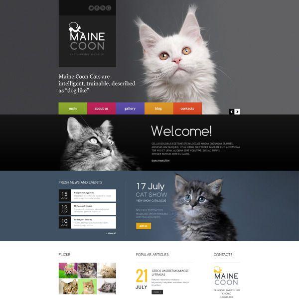 Cat Responsive Website Template Website Template Template Site Cats