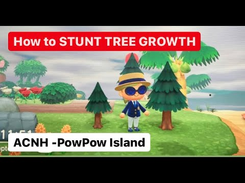 Animal Crossing New Horizons How To Stunt Tree Growth Youtube Tree Growth Animal Crossing Stunts