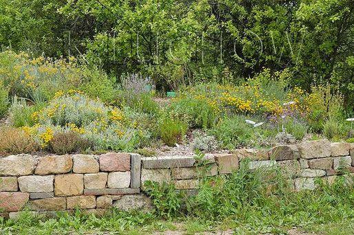 Garten Beetbegrenzung beetbegrenzung trockenmauern naturgarten naturgartenvielfalt de