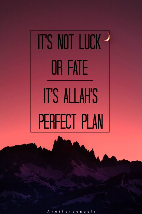 """Assalamualaikum brothers & sister, it is not fate or luck. Its Allah Azza Wa Jalla perfect plan. Let us start to think this way, not just it is a coincidence. And dont forget, say """"Alhamdulillah"""" for everything. Many of our brothers & sisters had many problems, respect them & honour them. It may easy for us, because Allah Azza Wa Jalla make things easy for us. Alhamdulillah. (EM)"""