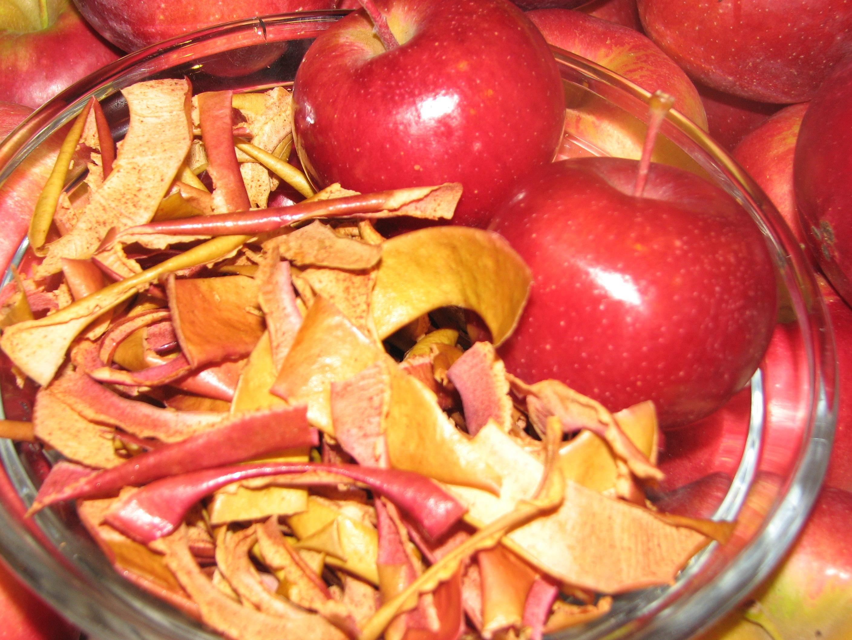 OvenDried CinnamonSugar Apple Peel Chips Recipe