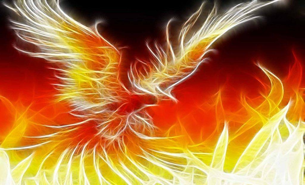Ave Fénix Fondos De Pantalla En 4k Hd Phoenix Images Phoenix Wallpaper Mythical Creatures