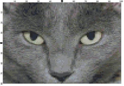 Gray Burmese Cat Cross Stitch Pattern By Theelegantstitchery 15 00 Cat Cross Stitch Cross Stitch Patterns Cat Cross Stitch Pattern