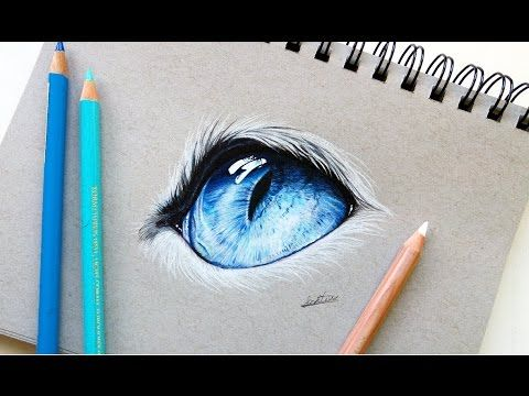 Realistic cat eye drawing with colored pencil | Leontine ...