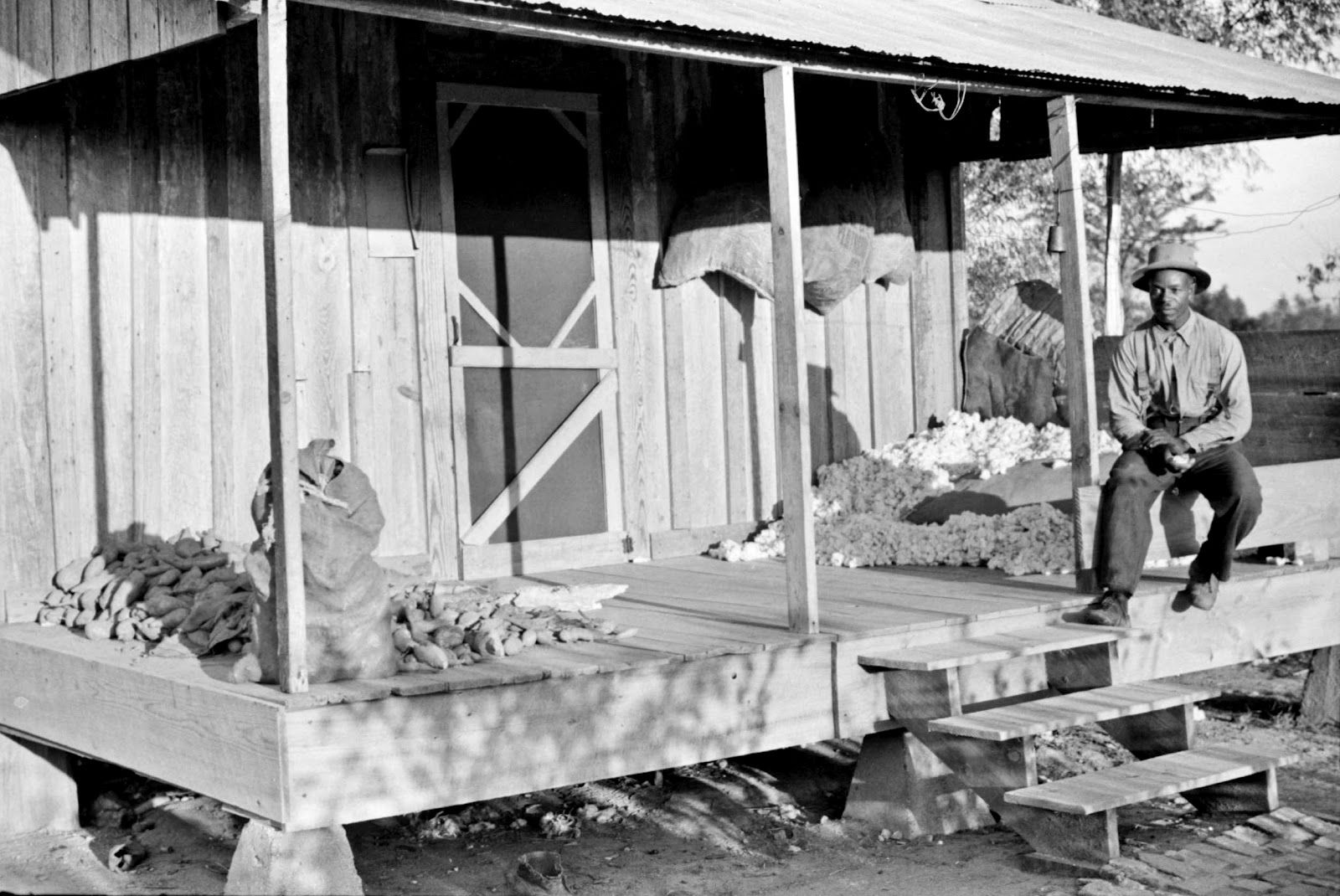 One Of The Sharecropper S Houses With Sweet Potatoes And