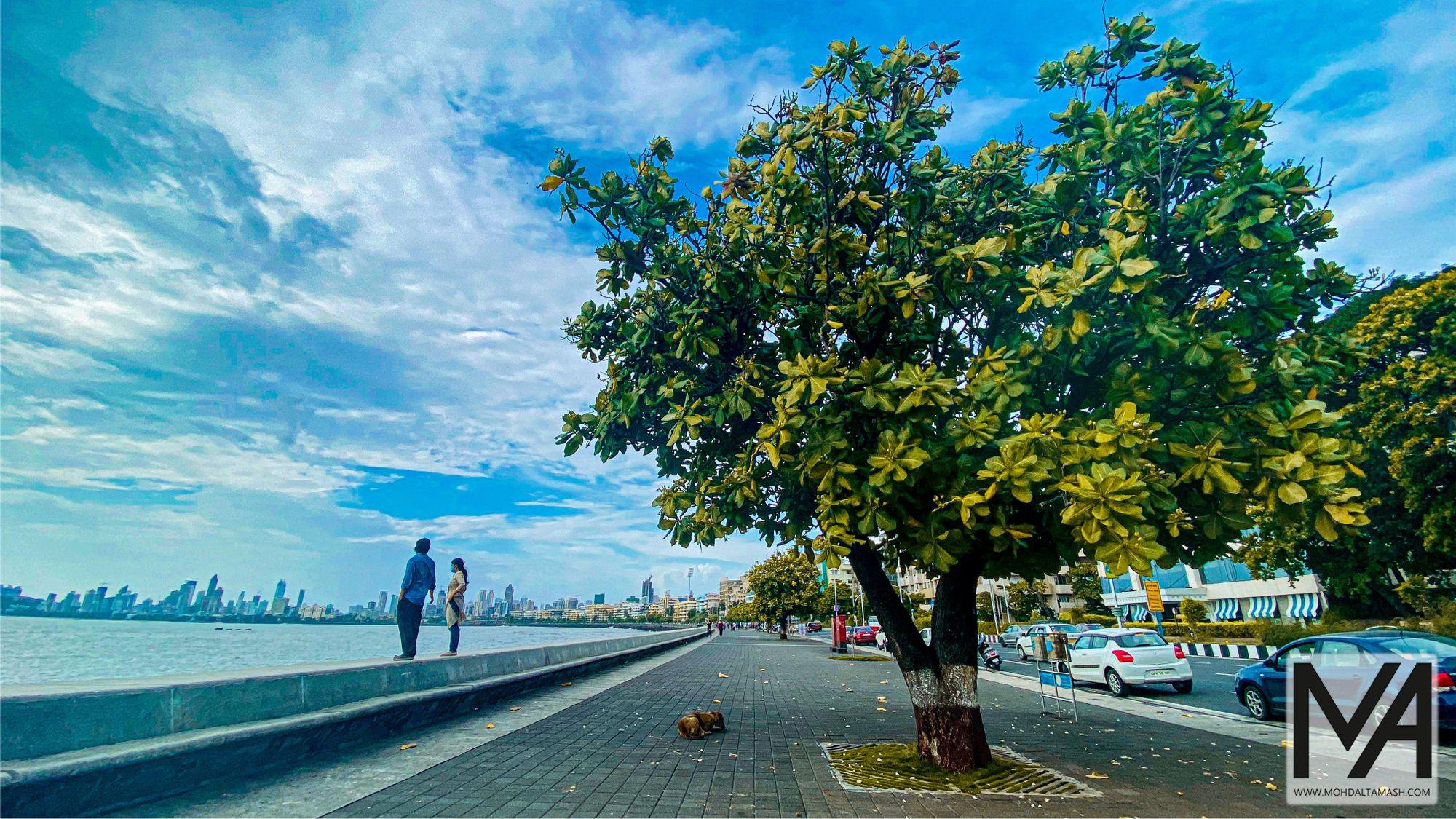 Couples enjoying the weather at Marine Drive Mumbai during rains.  #PicOfTheDay #PhotographyEveryday #PhotographySouls #PhotoOfTheDay #ExclusiveShots #PhotographyIsLife #iphonephotography #PhotographDaily #Composition #Photoshop #HDR #PhotographyAddict #exposure #ThroughTheLens #PhotographyLovers #PhotographyLife #PhotoOfTheDay #mohdaltamash