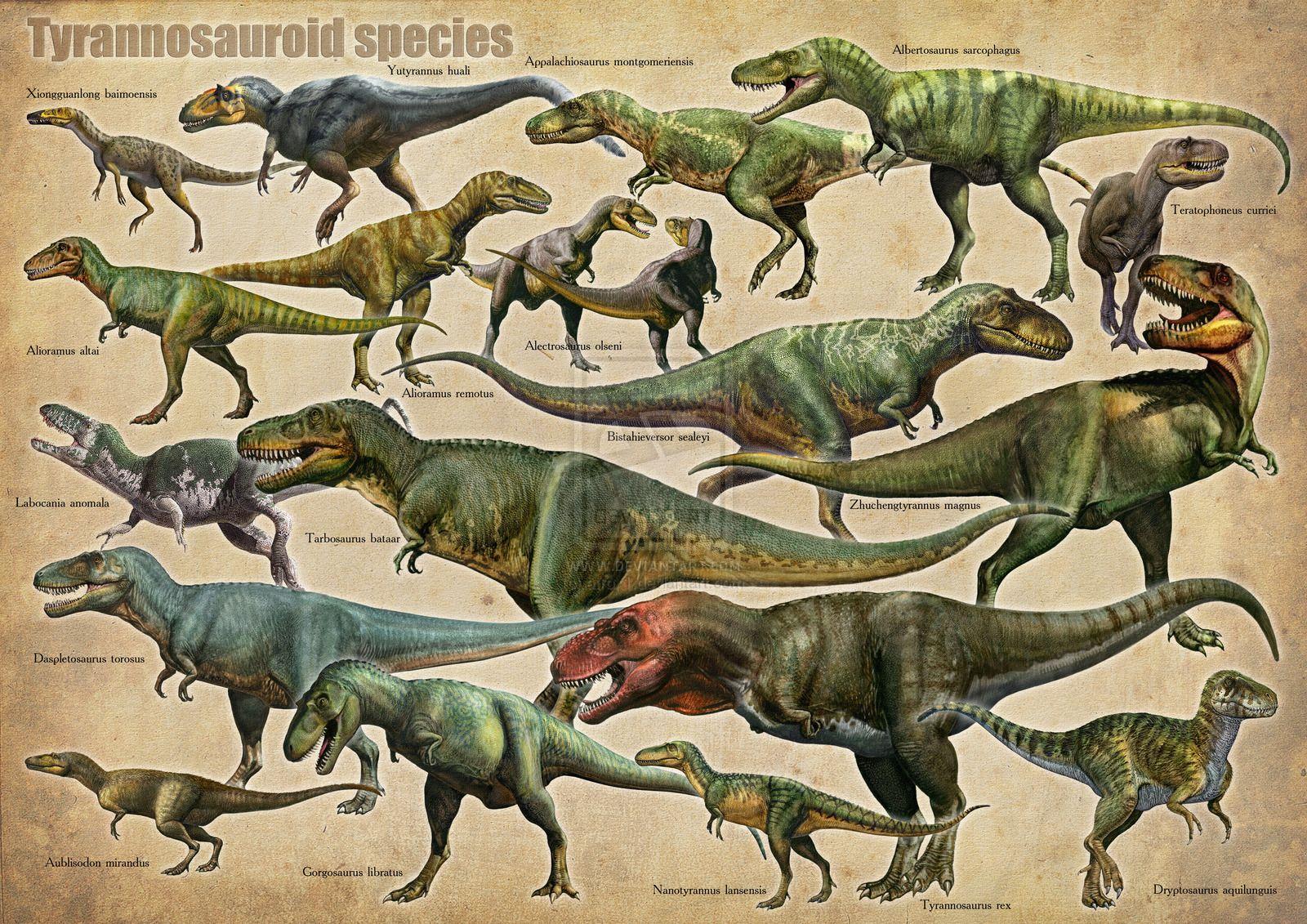 tyrannosaurs by on DeviantArt