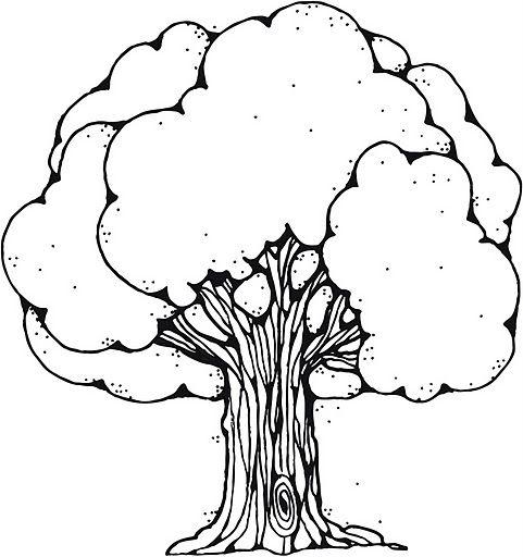 Resultado de imagen de dibujos de arboles para colorear e imprimir