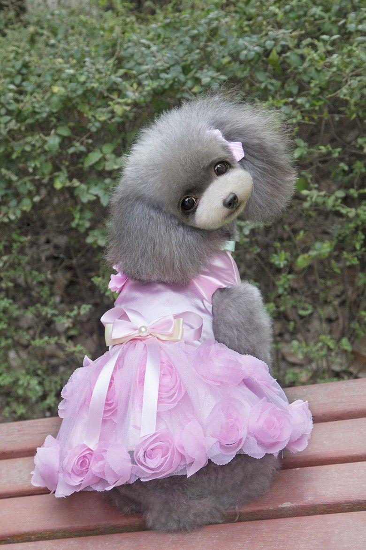 cbbc43e67 Aliexpress.com  Comprar Lujo Rosa Mascota Perro Vestido de Novia de  Princesa Tutu Falda Pequeño Perro Ropa de Verano Rosa Púrpura XS XXL de ropa  para perros ...