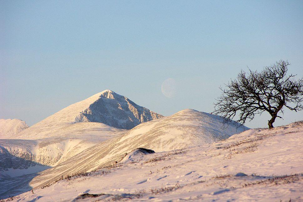 Ettermiddagssol på fjellet Høgronden, 2114 m, sett fra fjellet ovenfor Atnsjøen.    Foto: Helge Stikbakke