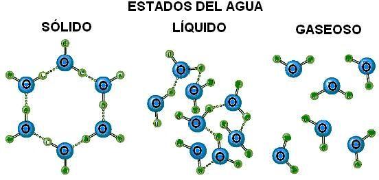 Quimica Organica El Agua Estructura Molecular Ciencias