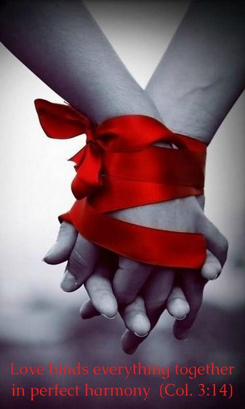 Bound together forever by Celebrating - Love - Red - Valentines