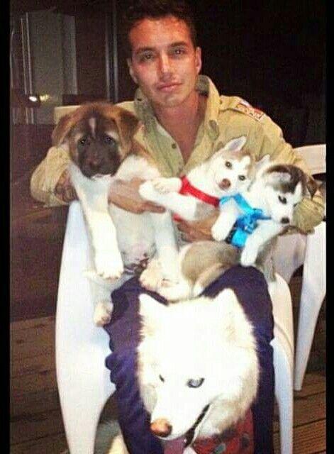 J Balvin Y Su 4 Perritos Animals Dogs Eye Candy
