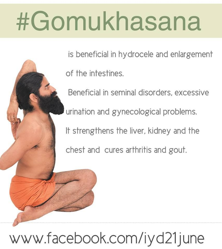 Gomukhasana Cow Face Pose Is Beneficial In Hydrocele And Enlargement Of The Intestines Internationalyogaday