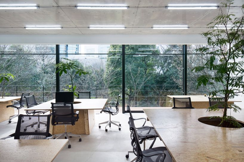 office space architecture. Schemata Architects Brings Plant Life Into Tokyo Office Space Architecture