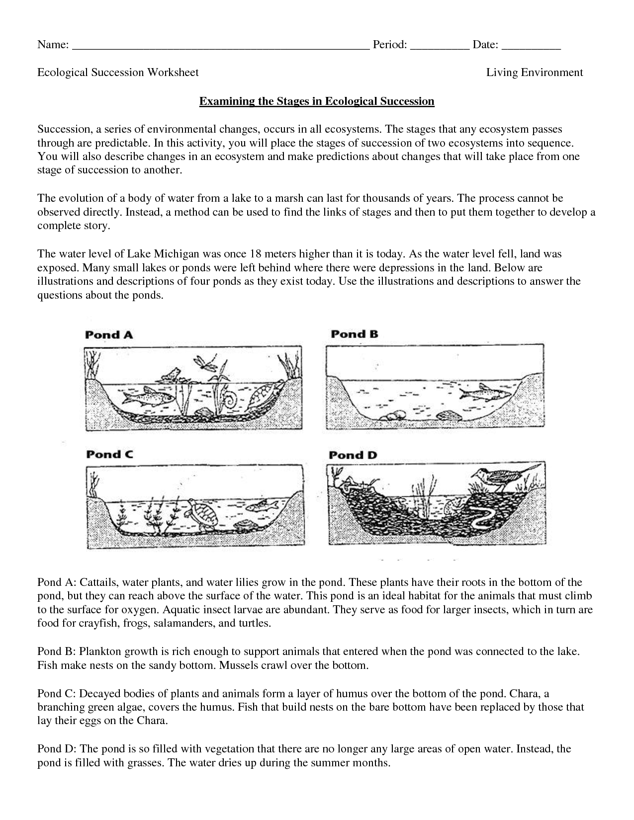 Printables Of Ecological Succession Worksheet