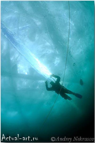 Андрей Некрасов_подводные фотографии_11