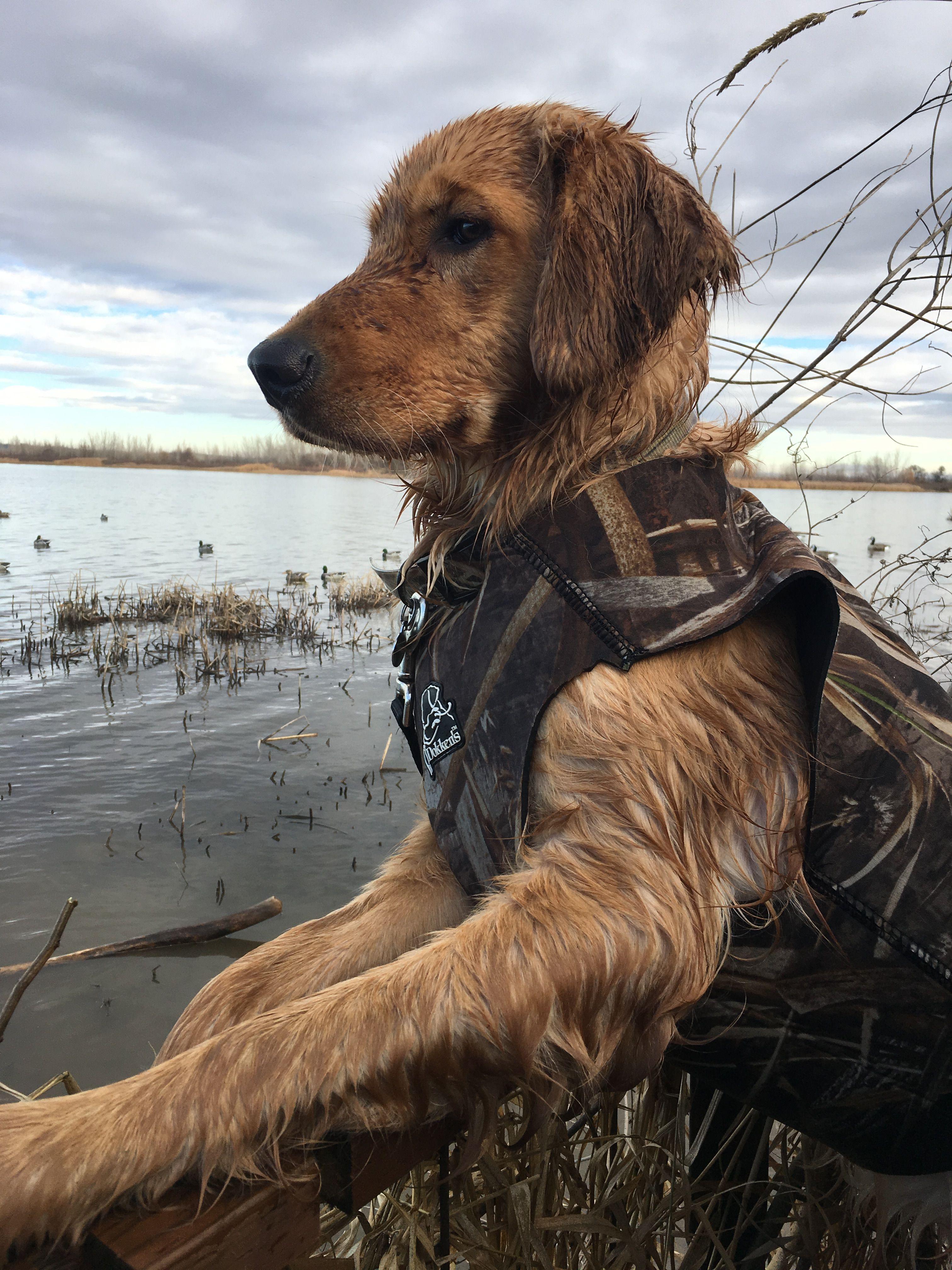 Ducks Dogs Decoys My World Hunting Dog Retreiver T shirt