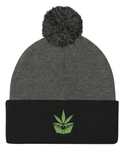 9a89abd92ca The Higher Education Beanie