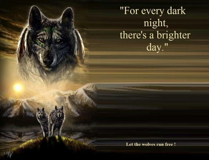 Husky Frases: Wolf Quotes, Lone Wolf Quotes, Wolf Love