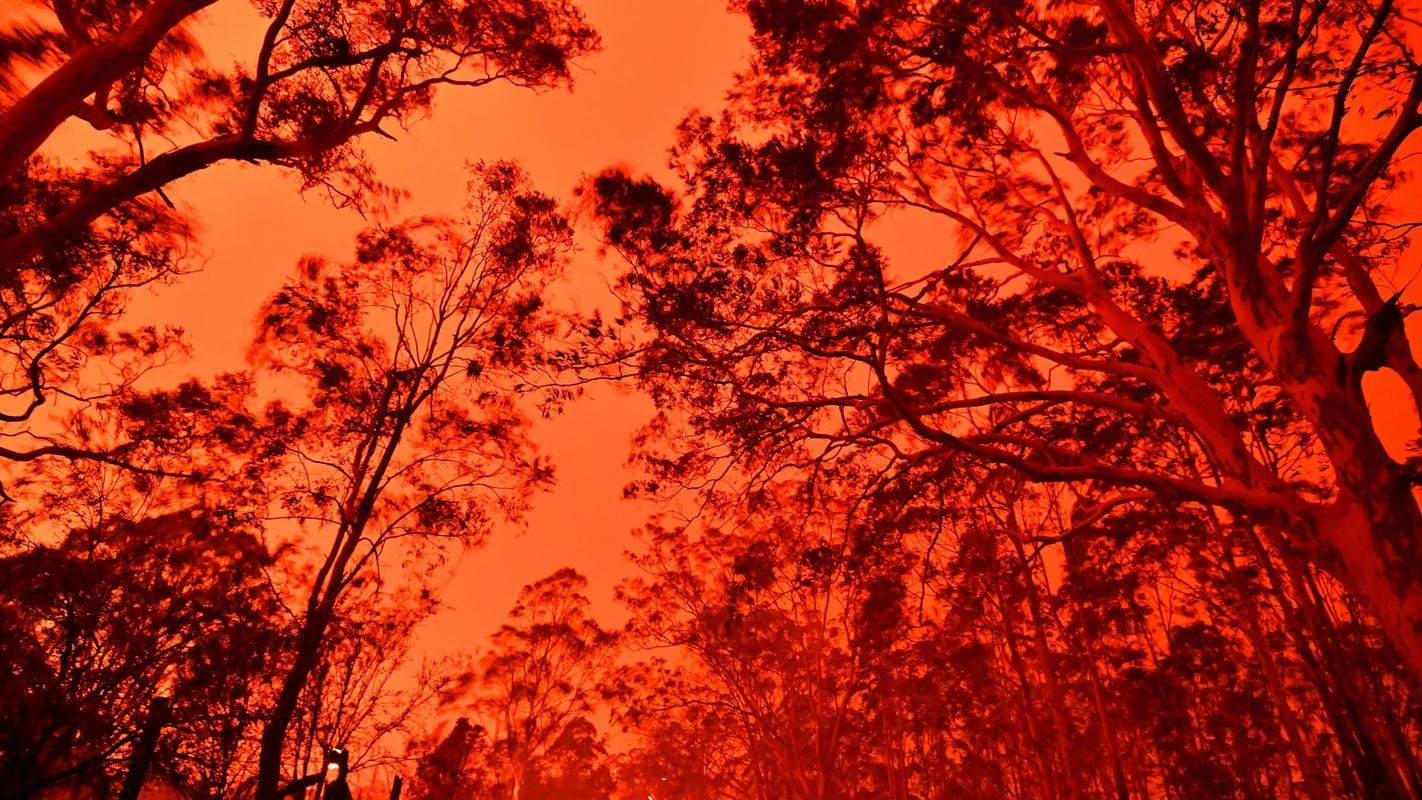 Australia bushfires have scorched 12M acres and killed at
