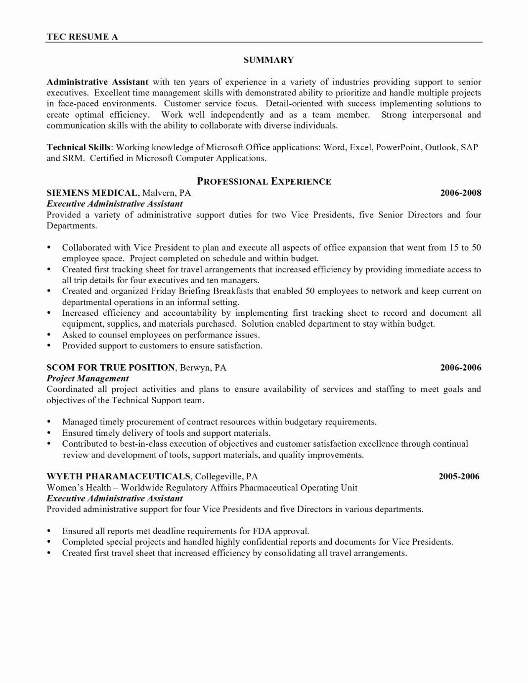 021 20Project Executive Summary Example Resume Samples For
