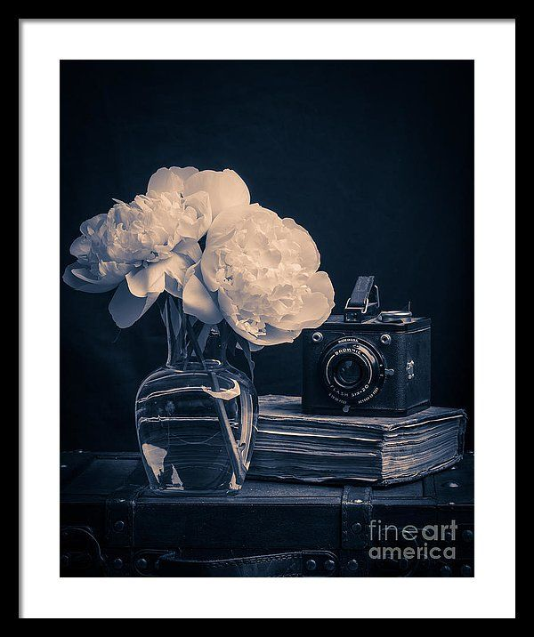 Flower framed print featuring the photograph peony still life by edward fielding artists holiday gift guide fine art america pinterest