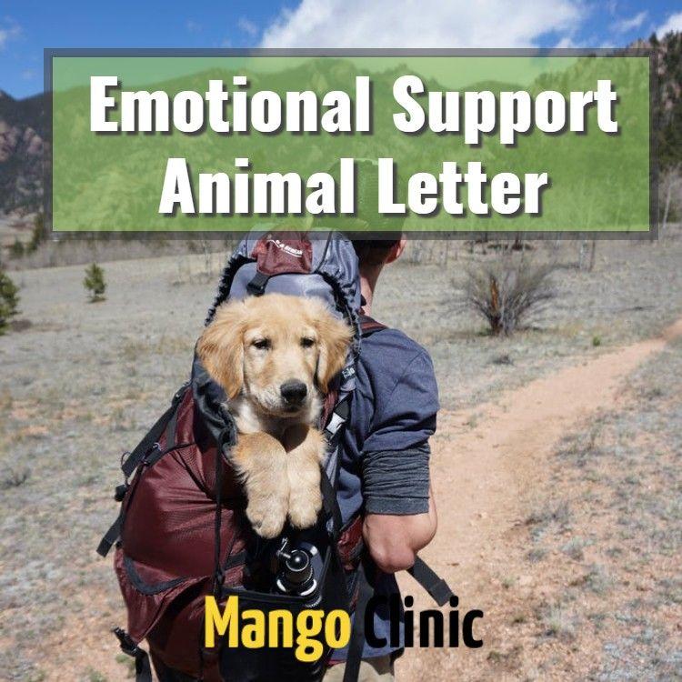 Emotional Support Animal Travel & Housing Letter