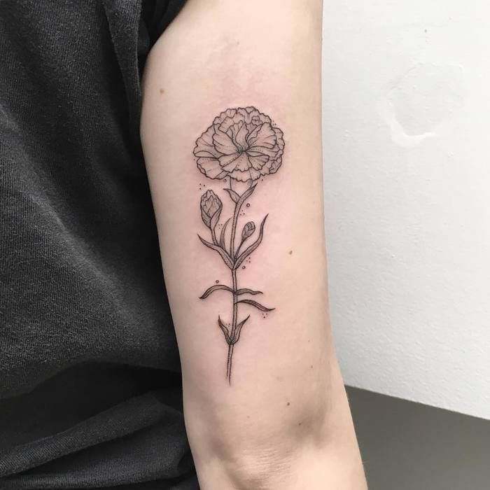 20 Wonderful Carnation Tattoo Designs - Page 2 Of 2