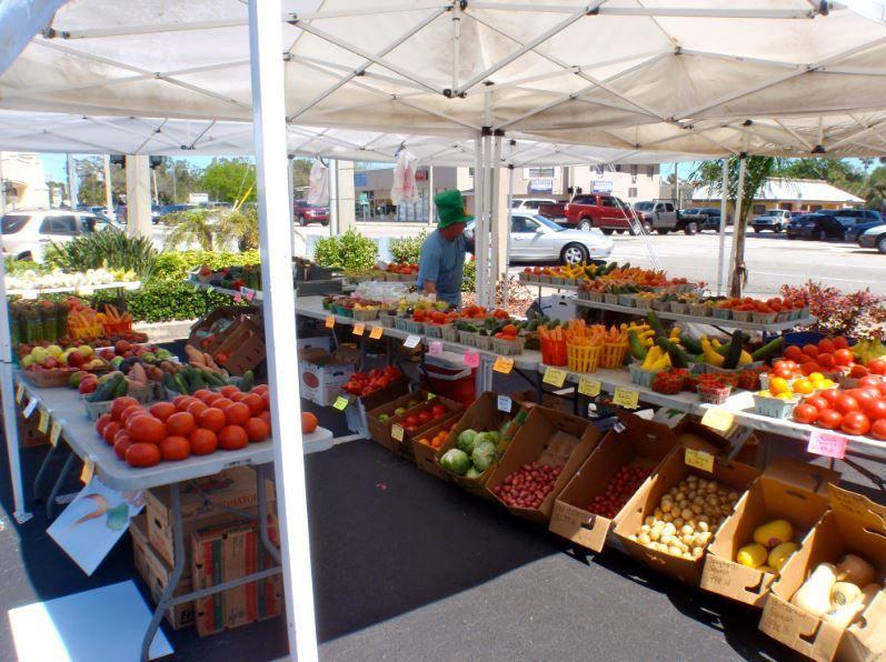 Brevard county farmers market in melbourne farmers