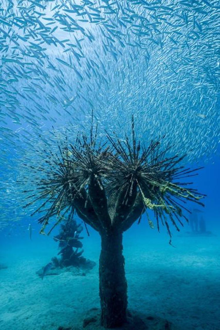 Museo Atlantico Lanzarote.Europe S First Underwater Museum Opens Off The Canary Islands